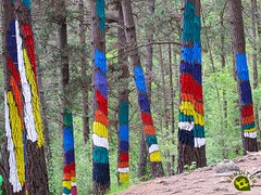 Bosque Pintado de Oma (Senditur) Tags: de bosque oma turismo senderismo vasco euskadi vizcaya ibarrola mágico pintado agustín país bizcaia senditur