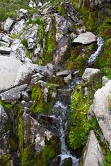 Water, Moss and Rocks Detail (jpmckenna - Northern Plains Tour Coming Up) Tags: hiking northcascades getoutside hikingwashington washingtontrails lakeanntrail mtbakernationalrecreationarea mypubliclands