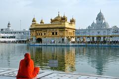 India - Punjab - Amritsar - Golden Temple - 337 (asienman) Tags: india sikh punjab amritsar gurudwara goldentemple harmandirsahib asienmanphotography