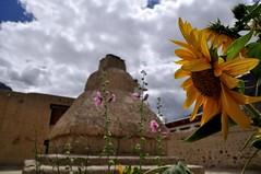 SPI_176 (soggy_3_16) Tags: spiti himalayas landscape nikon d90 tabo monastery
