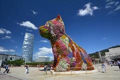 The Puppy @ Guggenheim Bilbao (Marco A Rodriguez) Tags: art museum guggenheim bilbao flower puppy