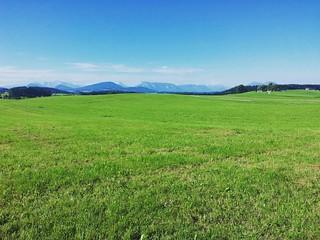Weites Land  _____________ #landscape #landschaft #fields #green #grass #sky #wohnblogAt