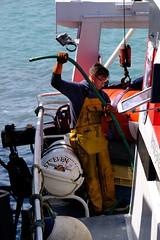 DSCF1495 (Jc Mercier) Tags: pche retourdepche fishermen marins cancale
