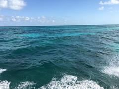 Water, Water Everywhere! (MyFWCmedia) Tags: ocean boat sky fwc myfwc myfwccom wildlife florida floridafishandwildlife conservation johnpennekamp keylargo flkeys floridakeys floridastateparks johnpennekampcoralreefstatepark park pennekamp lovefl