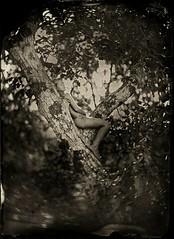 1464443458 (JIMME HANE AHMMED) Tags: jimmehaneahmmed kate labu ali photographar beautifull nice nud