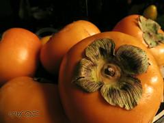 Persimmon (A. K. Hombre) Tags: fruit diospyros persimmon godspear