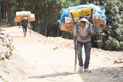 Overburdened (D A Scott) Tags: himalayas nepal asia mountains trekking everest base camp gokyo lakes trek