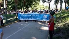 Esta fue la novena caminata para cerrar la Semana Mundial de la Lactancia Materna (bancos de leche materna) Tags: caminata lactancia materna leche semana mundial parque del este caracas