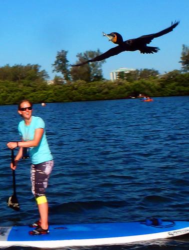 5-1-15-Paddleboard-Yoga-Teacher-Training-Sarasota-FL 42