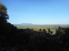 Jimena de la Frontera April-May 2015 (ecology_garden) Tags: