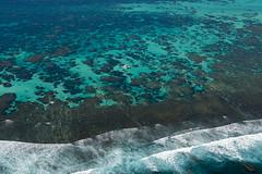 WA Coral Bay -Snorkling tour - 3111