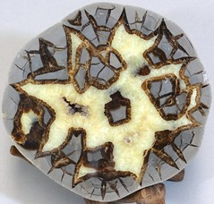 Septarian Nodule with Calcite from Utah.  15cm across (lhboudreau) Tags: rock stone rocks stones minerals mineral geode specimen calcite specimens nodules geodes nodule mineralspecimen septariannodule mineralspecimens septarian septarianspecimen