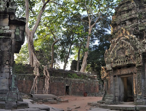 angkor - cambodge 2014 23