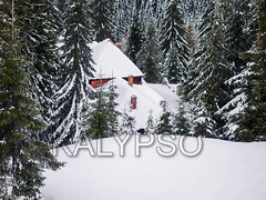 Snowy Wooden Cottage At Muntele Mic Resort (kalypsoworldphotography) Tags: retezatgodeanumountains carpathians tarcu smallmountain muntelemic romania caransebes pineforest altitude winter snow landscape nature rustic cold wooden traditional house white outdoor mountain snowy rural background outdoors ski frozen forest field travel evening farm vacation season holiday scene home isolated resort village snowfall snowstorm adventure christmas cottage countryside farming farmland wintertime snowcovered