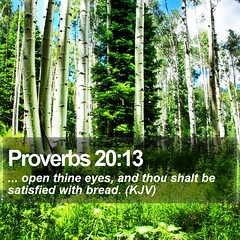Daily Bible Verse - Proverbs 20:13 (daily-bible-verse) Tags: bread scriptures praisejesus wordofgod