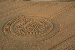 Buongrano (Antonio Cinotti ) Tags: mulinobianco buongrado nikond7100 nikon d7100 rollinghills nikon1685 italia italy tuscany toscana monteronidarbia wheatfield circles cropcircles sunrise summer cookie