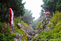 IMG_3427 (The Mitz Photography) Tags: gams grünersee hochschwab mariazell maryclan murmerl mädels nebel pilgern sommer steinbock wandern