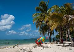PigeonPt1Aug2016 (Sazia3) Tags: tobago tropicalcoastline tropical caribbean coconuttrees beach beachatsunset caribbeansea sunset pigeonpoint pigeonpointbeach beachwraps beachchairs