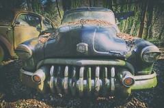 Toothy Grin (Martyn.Smith.) Tags: decay rust corrosion classic cars vintage decaying corroded leaves forest canon eos 700d flickr image photo
