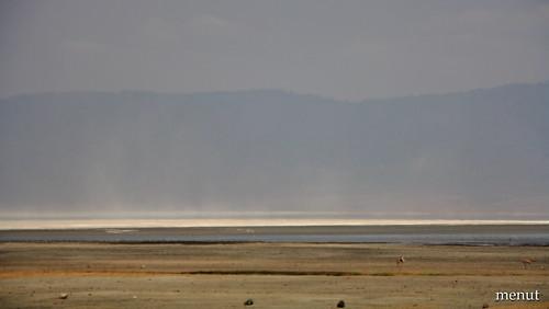 L'explanada del Ngoro-Ngoro - Tanzania - Ngoro-Ngoro Plains