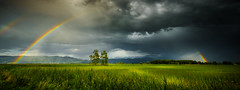 Rainbow Panorama (marco soraperra) Tags: landscape grass clouds sky weather rain thunder rainbow colours green yellow red blue nikon nikkor tree trees hill hills field light shadow