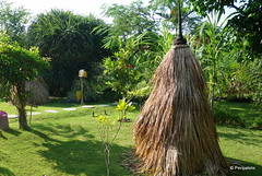 DSC06414 (Peripatete) Tags: bali canggu resort beach desaseni nature flowers fullmoon culture tradition architecture food