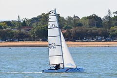 DSC_0386 (LoxPix2) Tags: loxpix queensland australia sailing catamaran trimaran nacra hobie arrow moth 505 maricat humpybongyachtclub humpybash aclass f18 mosquito laser bird spinnaker woodypoint