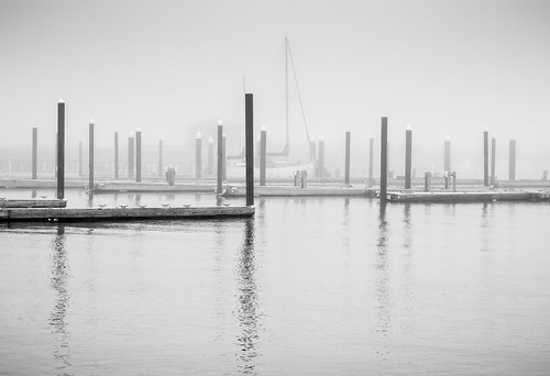 fog harbor maine southportland