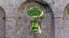 the view through - castle wall (Jac Hardyy) Tags: light brick castle window grass stone wall licht mural sandstone arch view arms coat foliage romantic gras through blatt bltter bume baum oval mauer bogen leafage romantisch blattwerk schlos gemauert schlosmauer gemauerter