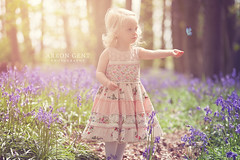 Bluebells (arrongent) Tags: trees sun cute hockey girl bluebells photoshop canon butterfly woods toddler pretty dress daughter essex southend