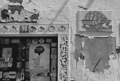 Repblica (rgrant_97) Tags: film portugal nikon ilford coimbra f55