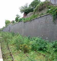 Day 140 (Emmadukew) Tags: plants urbandecay railway pad16 140366 1picaday2016