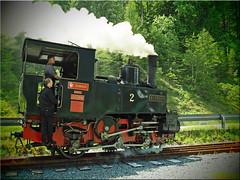 Narrow-gauge Steam locomotive Hermann der  Achensee Railway (Ostseetroll) Tags: achensee aut geo:lat=4742579973 geo:lon=1173177952 geotagged sterreich pertisau tirol schmalspurdampflokomotive herman achenseebahn narrowgaugesteamlocomotive achenseerailway