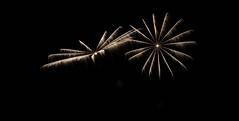 _MG_1192 (sdferrell) Tags: dmt fireworks ny