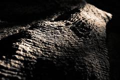 Granit (Vincent Marliac) Tags: d810 nb bw noiretblanc blackandwhite abstrait abstract dtail texture lignes ombres bretagne france valledessaints courbes curves