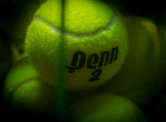 tennis (auntneecey) Tags: tennis ball penn