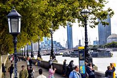 Afternoon at South Bank (Biolchini) Tags: england london embankment river thames londres tamisa marcelobiolchini