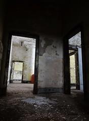 Multiple Doorways (Trebor420) Tags: abandoned chicago offices doorway slaughterhouse southside old