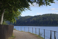 _DSC5579 (chicour) Tags: sony rx100 rx100m2 rx100ii allemagne germany t summer 2016 schluchsee