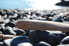Driftwood (laurelpattee) Tags: nature wood wooden driftwood rocks stones cobble beach sea ocean pacific newport yaquina rock stone water
