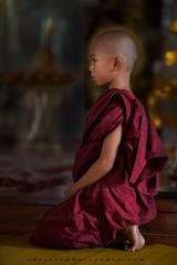 _MG_5820-le-18_04_2016-wat-thail-wattanaram-maesot-thailande-christophe-cochez-cop (christophe cochez) Tags: burmes burma birmanie birman myanmar thailand thailande maesot myawadyy monk bonze novice religion watthailwattanaram travel voyage bouddhisme buddhism portrait