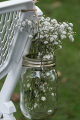 Baby's Breath (janedsh) Tags: sharpfamily horner hornerpartyof2 flora flower nature people morgan holman photography wedding babysbreath photo by jane holmanphotoscom ed holmanphotography photobyjane