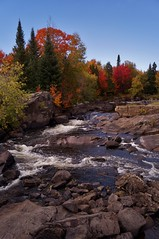 Val-David - rivière du Nord 1 (luco*) Tags: québec canada laurentides valdavid va david couleurs autome érables feuillage rivière du nord rapides arbres conifères flickraward flickrawardgallery