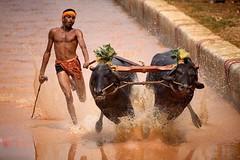اغرب المشاهد فى مسابقة التصوير الدولية (www.3faf.com) Tags: الصور على صورة تصوير مسابقة أكثر برنامج الدولية أطفال نهر اغرب المشاهد