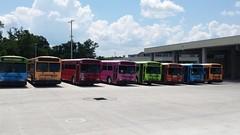 1997 Gillig Phantoms (abear320) Tags: bus orlando florida gainesville system transit phantom rts gillig regional lynx