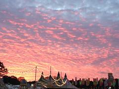 Sunset - Common People 2015 (mitchellman98) Tags: sunset people sun festival night day southampton common iphone 2015