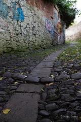 Durham's Cobbled Lane (MarkGeddes7) Tags: door old city black green leaves canon graffiti durham path line lane curve cobbles 500d