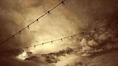 Light Bulbs (magnetic_red) Tags: sky lines sepia clouds bulbs