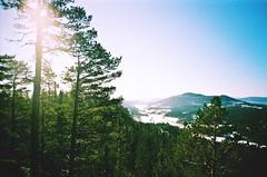Landscape (Loreta Anna) Tags: mountains forest landscape view sweden
