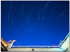 "Noche movidita (""PABLO"" ) Tags: longexposure cats night cat stars noche pablo sigma gatos olympus valladolid gato estrellas angular omd em1 largaexposicin circumpolar girn estrellapolar pcastrobarba livecomposite livecomp"